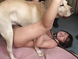 Waxing slave with tiny cock wax on tiny dick and wanking tmb