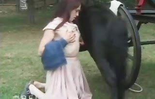 horse-sex, cock