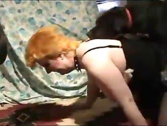 Doggy style sex, dog sex, beastiality porn