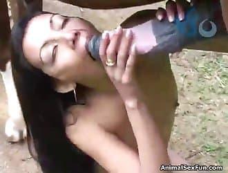 Horse dick, horse cock, farm animal sex