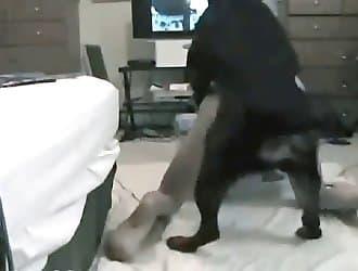 Dog and woman, dog licker, dog sex