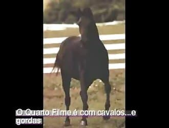 Horse fuck, horse dick, horse sperm