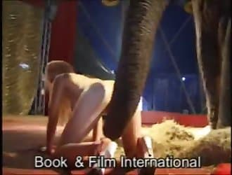 Elephant and woman, exotic animal sex, beastiality action