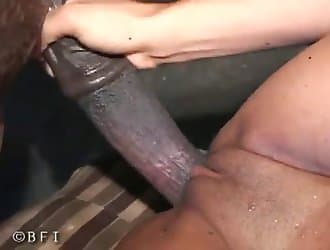 Erotic outdoor zoo blowjob for an animal